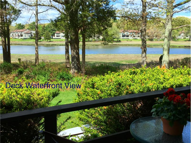 Another vantage point view from the deck