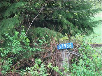 53936 Rockport Cascade Rd, Rockport, WA