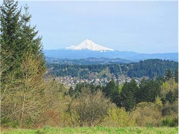 VIEW OF MT HOOD - S SIDE OF LOT
