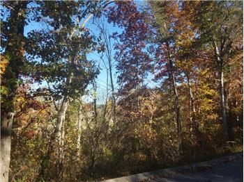 Lot 97  Eagles Ridge, Tazewell, TN