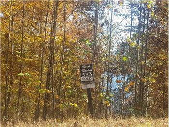 Lot 533 Garnet Trl, New Tazewell, TN