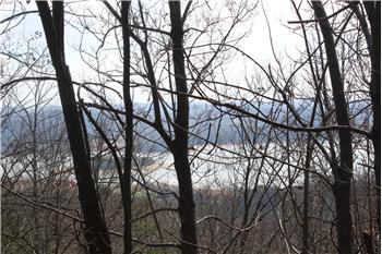9097 Paradise View Drive, Mooresburg, TN