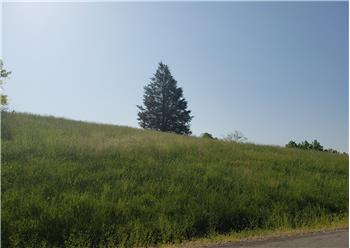 Lot 128 Tanzanite Trl, New Tazewell, TN