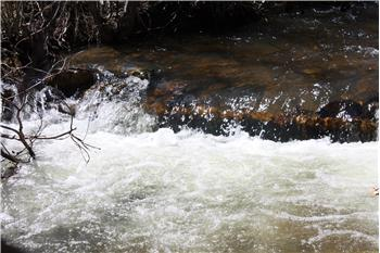 1228 Apex Valley Road: Year Round Creek, Black Hawk, CO