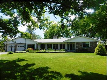 Primary listing photos for listing ID 479096
