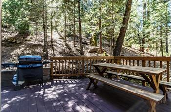 1393 Silver Fork Road, Kyburz, CA