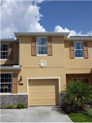 8443 Pine River Road, Tampa, FL