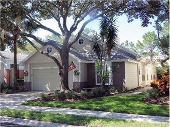 5123 Sterling Manor Drive, Tampa, FL