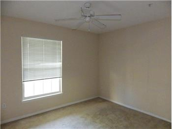 tampa rental backpage