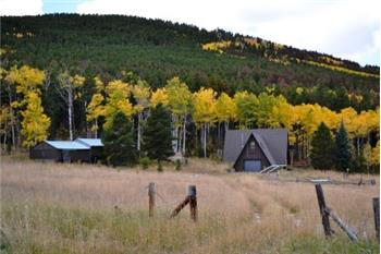 1081 Deer Horn Trail, Bellvue, CO