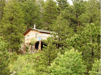 1138 Deer Horn Trl., Bellvue, CO
