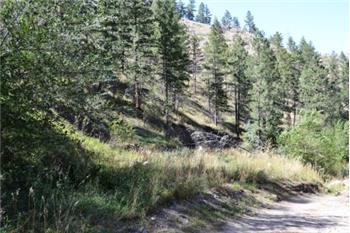 117 Falls Creek Dr., Bellvue, CO