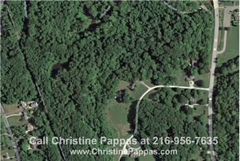 Lands for Sale in Concord OH - This land can be an exclusive site for your home with its convenient location near the city!