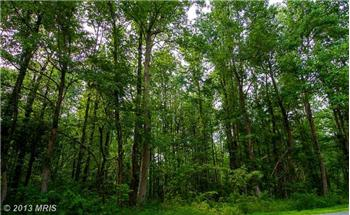 Lots and Land for sale in PRINCE FREDERICK, MD