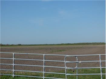 0  Hwy 60, Wadsworth, TX