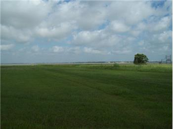 collegeport singles Collegeport - /collegeport  land for sale in matagorda county texas - page 5 of  a work site size single wide trailer with 1/2 bath has been turned into a .