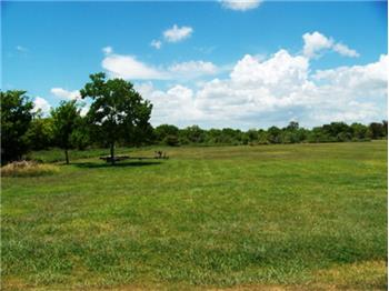 4179  Live Oak Bend, Sargent, TX