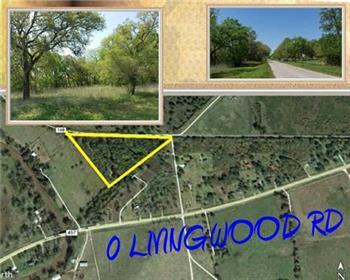 0 Livingwood Rd. CR 148, Van Vleck, TX