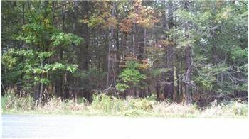 Lot 31 Deer Laurel Estates Road, Lake Ariel, PA