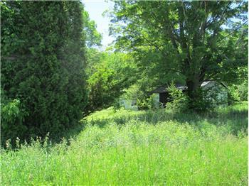 Corner SR 690 & Haas Pond Road, Madison Township, PA