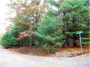 Arbutus Lane & Lot 4 Blueberry MLS# 16-5008, Paupack, PA