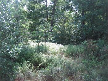 LOT 15  Fox Ridge Park Dr., Greeley, PA