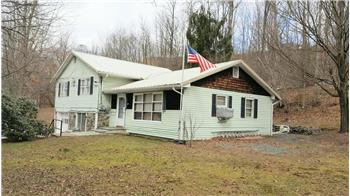 485 Old Willow Ave., Honesdale, PA