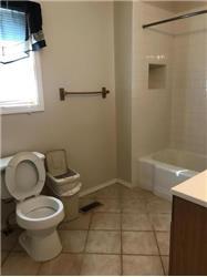 susquehanna rental backpage