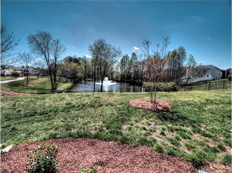 View of Neighborhood Pond - Homes for Sale in Holly Springs, Apex & Raleigh