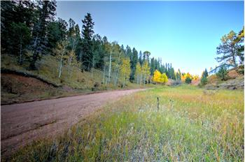 homes for sale in divide colorado homes for sale