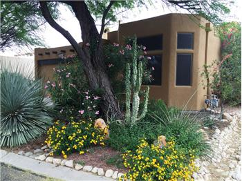Primary listing photos for listing ID 428808
