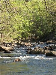 6299 Crabtree Falls Hwy, Tyro, VA