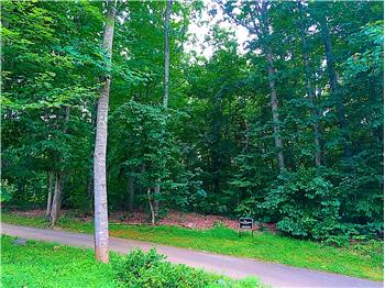 Lot 107 Golf Course Trail, Amherst, VA