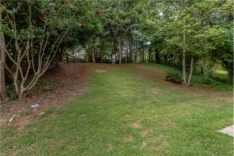 Wooded, private back yard