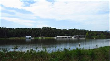 45 slip arkansas marina with home store shop for sale for Lake dardanelle fishing report