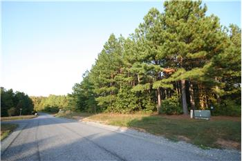 lot 41  FOREST RIDGE DR, Buckingham, VA