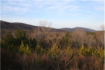 Prime Investment Land on Rockfish River Road, Schuyler, VA