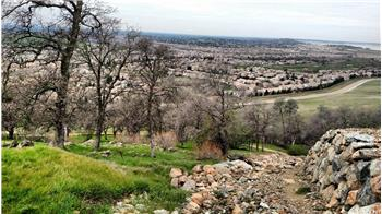 el dorado hills rental backpage