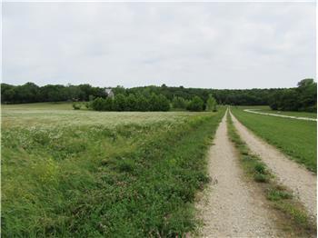 Land in 1500 Block N 600 Road, Baldwin, KS