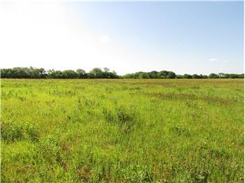 Land in 600 Blk N 775 Road, Lawrence, KS
