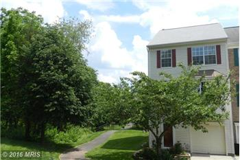 Primary listing photos for listing ID 441713