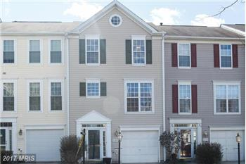 Primary listing photos for listing ID 466487