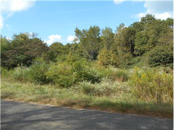 11 Acres South of Eagletown, Eagletown, OK