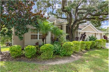10106 Paddock Oaks Drive, Riverview, FL