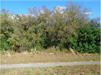 Biscayne Dr Lot 25, North Port, FL