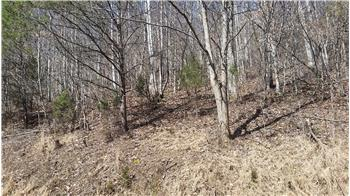 Lot 124 Chimney Rock Road, New Tazewell, TN