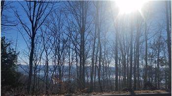 Lot 216 Harbor View, Mooresburg, TN