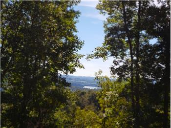 Lot 216 Harbor View, Mooresburg, TN
