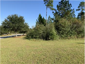 Lot 28 Tall Timber Lane, Elberta, AL
