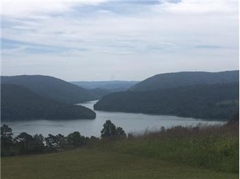 Lot 300 Marble Point Way, New Tazewell, TN